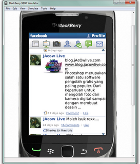 Blackberry Device Simulator